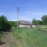 Голиково,восточная окраина села.