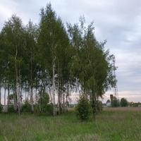 Окраина Малино