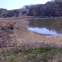 Ставок Чубовое,апрельская засуха,воды почти не осталось.