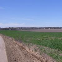 Полевая дорога к Петровскому со стороны Флярковки.