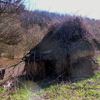 """Заброшенный cарай с соломенной крышей для свиней,украинское название """"саж"""","""