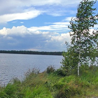 Берег Скачальского озера