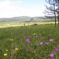 Кирово весной
