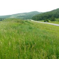 Дорога к селу Новомарьясово