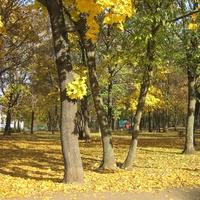 Харьков. Молодёжный парк осенью.