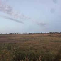 Луг на правом берегу реки Большая Терновка.
