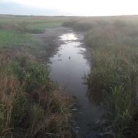 Река Большая Терновка.