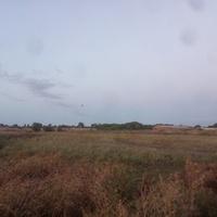 Вид на фермы от реки Большая Терновка.