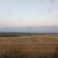 Пойма реки Большая Терновка.