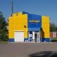 """Продуктовый магазин """"Плеяда""""."""