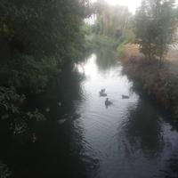 Река Гнилокиш.