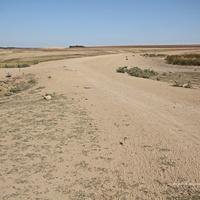 Засуха, 2020 год. Дамба и высохший пруд