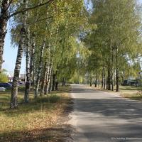 Анопино, ул. Ленина