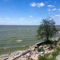 Таганрог. Акация над утёсом Таганрогского залива.