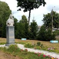 Рiпки. Софiя Русова (1856 - 1940)