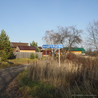 д. Андрейцево,  южная сторона