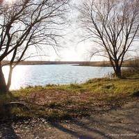 Плотина и пруд у Андрейцева