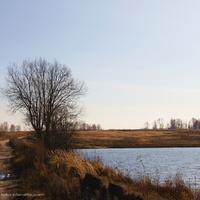 Андрейцевская плотина, дорога от Андрейцева к Гатихе,