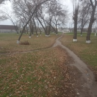 Парк в центре.