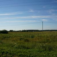 Поле у деревни Асошники