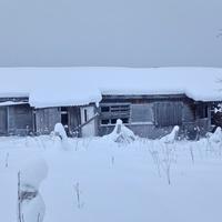 заброшенный жилой дом в д. Нижняя Омра