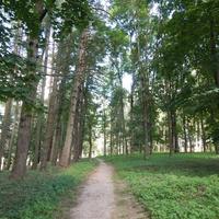 Парк Межево