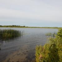 Южная часть Черейского озера