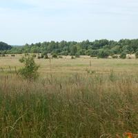 Природный пейзаж (окрестности д.Б.Медвядка)