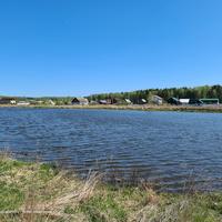 Пруд в Толпухово, вид с юго - запада