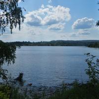 Вид на реку Мутная