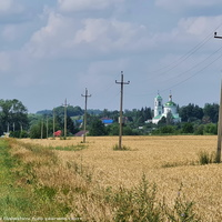 Панорама с. Борисовкое,  вид на церковь Василия Великого