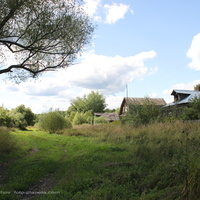 д. Пушнино,  дома в конце,  в юго - западной части деревни