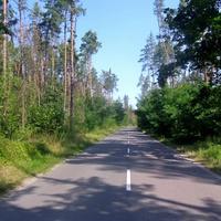 Дорога на Свидивок.