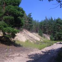 Дорога на хутор Ясковцы, песок вокруг песок.