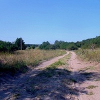Песчаная дорога по хутору.