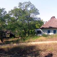 Старая хата (нежилая).Общий вид двора.