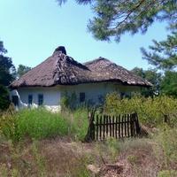 Хутор Ясковцы,старая хата (нежилая).Вид с восточной стороны.