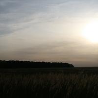 поле за деревней Ситьково
