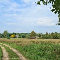 д. Петряево,  панорама с востока