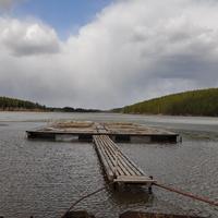 Козинский пруд