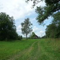 Дом в Чижово. 2009 г.