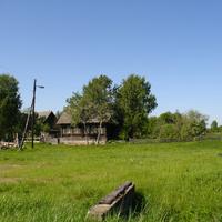 д. Карнаухово июнь 2011