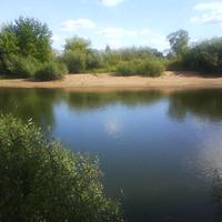 миандра реки Сож д.Лобковичи