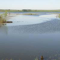 Стахановский пруд летом
