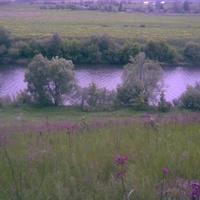 р. ока близ деревни песковатое