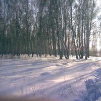 зимой своя красота. д.песковатое