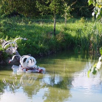 лебяжий пруд
