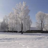 Зима в Московском Бобрике