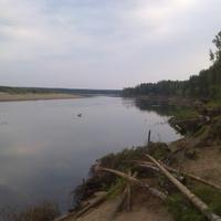 берег р.Вычегда