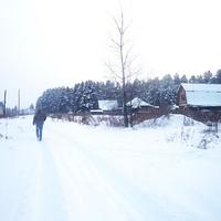 Деревня Алаево зимой